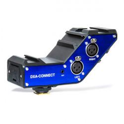 Beachtek DXA-CONNECT Adaptador de Audio para DSLR y Camcorder