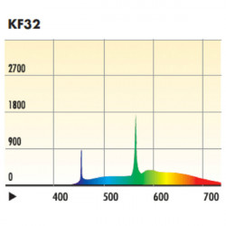 Kino Flo Tru Match Compact Ampolleta Fluorescente 55W / 3200K Diva Light