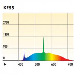 Kino Flo Tru Match Compact Ampolleta Fluorescente 55W / 5500K Diva Light